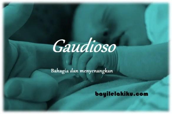 arti nama Gaudioso