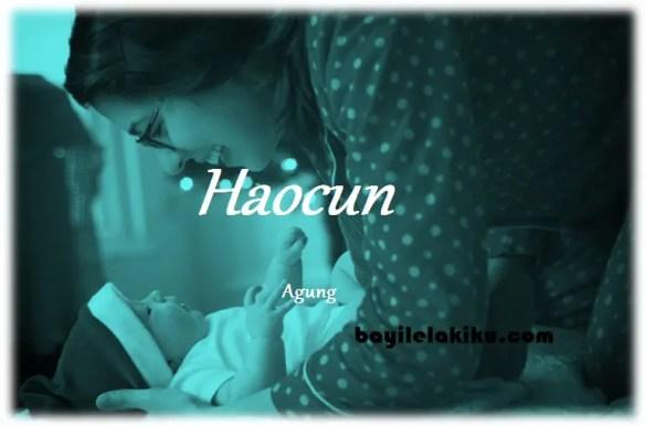 arti nama Haocun