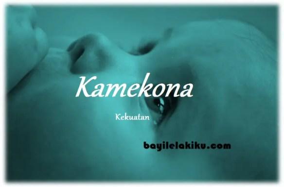 arti nama Kamekona
