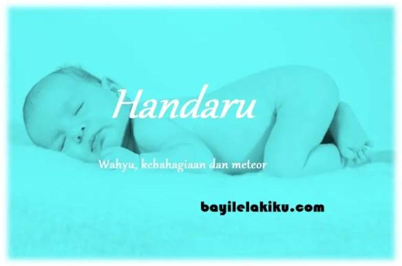 arti nama Handaru