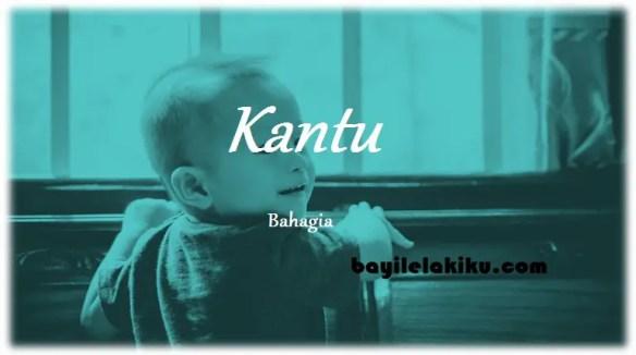 arti nama Kantu