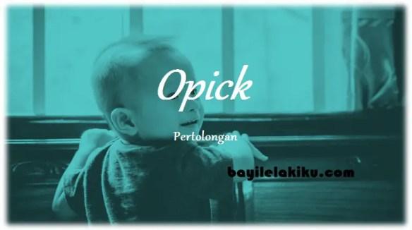 arti nama Opick