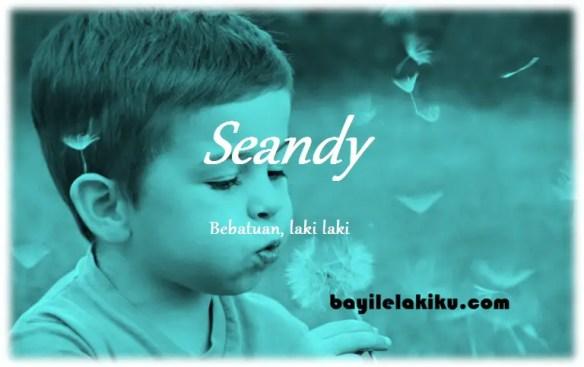 arti nama Seandy