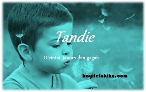 arti nama Tandie