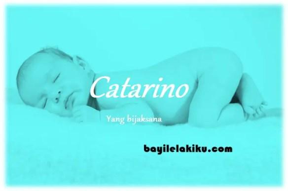 arti nama Catarino