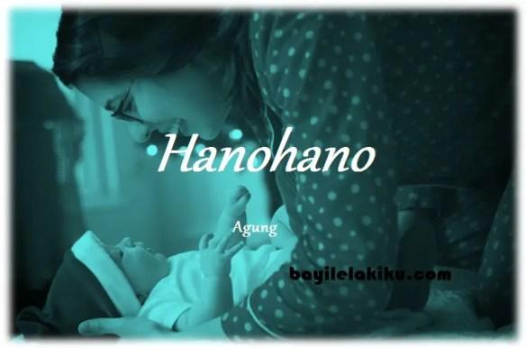 arti nama Hanohano