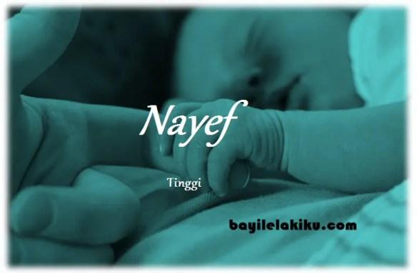 arti nama Nayef