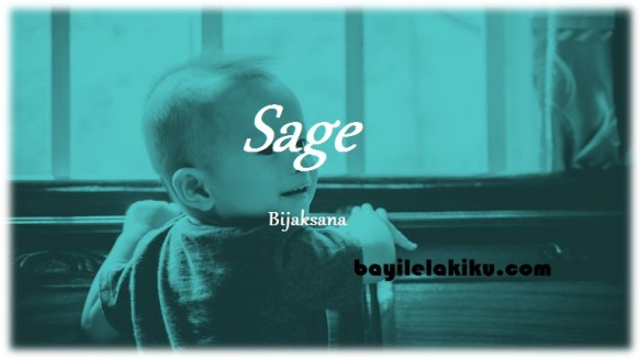 arti nama Sage