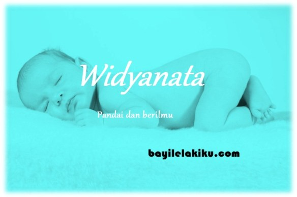 arti nama Widyanata