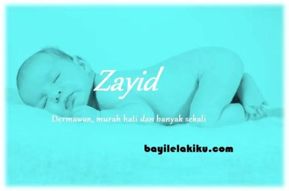 arti nama Zayid