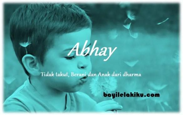 arti nama Abhay