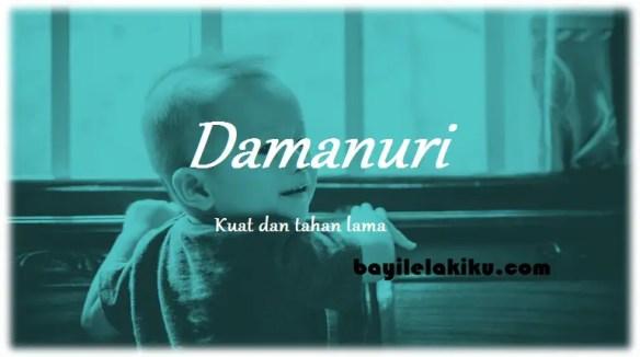arti nama Damanuri