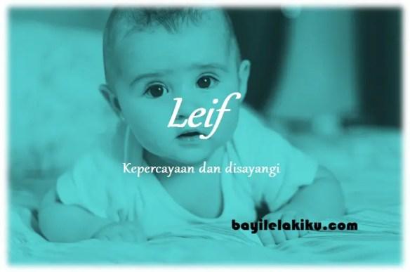 arti nama Leif