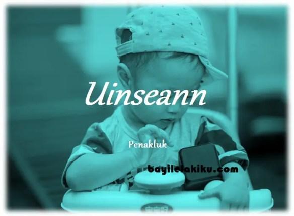 arti nama Uinseann