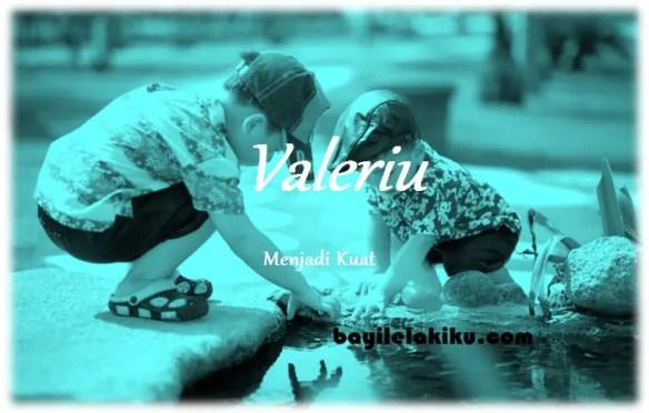 arti nama Valeriu