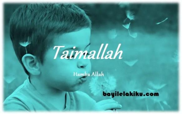 arti nama Taimallah