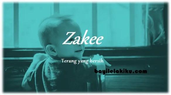 arti nama Zakee