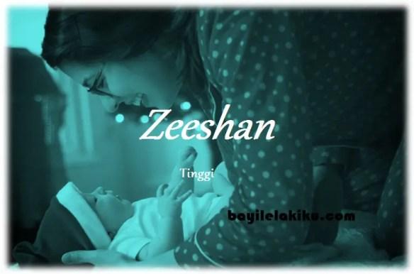 arti nama Zeeshan