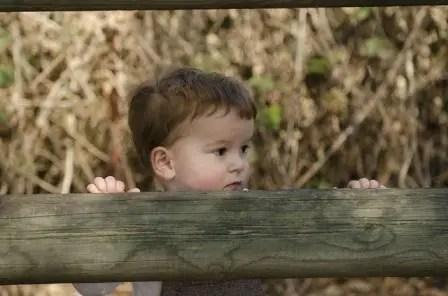 Nama Bayi Laki Laki Gypsi Yang Baik Dan Indah ...