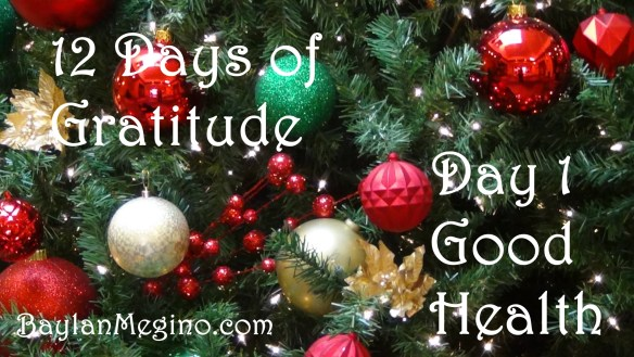 12 Days of Gratitude Day 1- Good Health by Baylan Megino