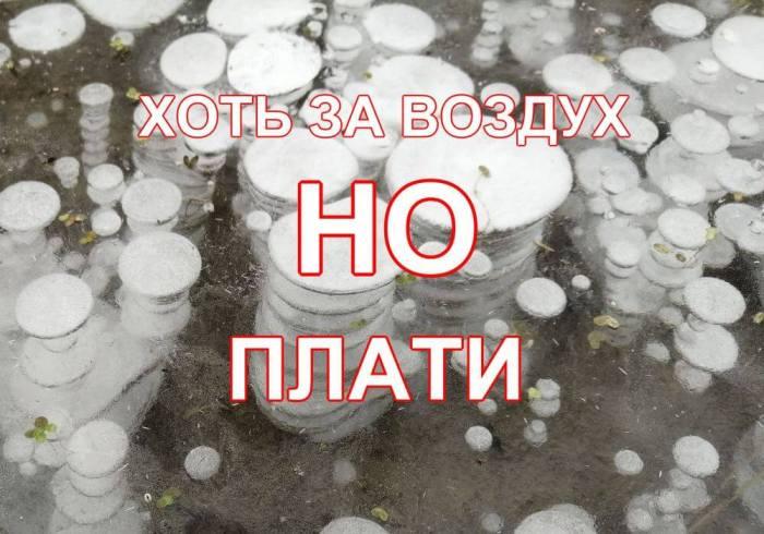 продлить домен в reg.ru