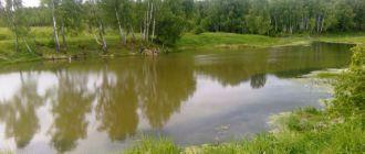 Укрепить плотину и берег пруда