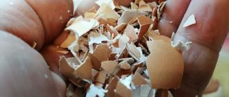 Яичная скорлупа курам