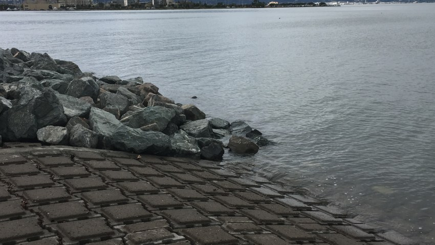 Visualizing Higher Sea Levels with King Tides