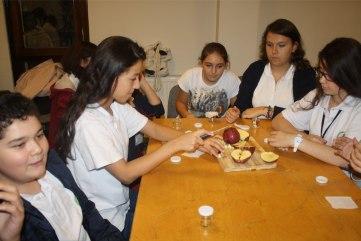 Mikrobiyoloji-Yaz-Okulu-13