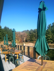 The deck behind the Education Building, overlooking a pond