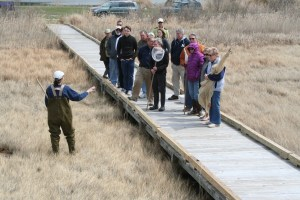 A group learns about life in the marsh