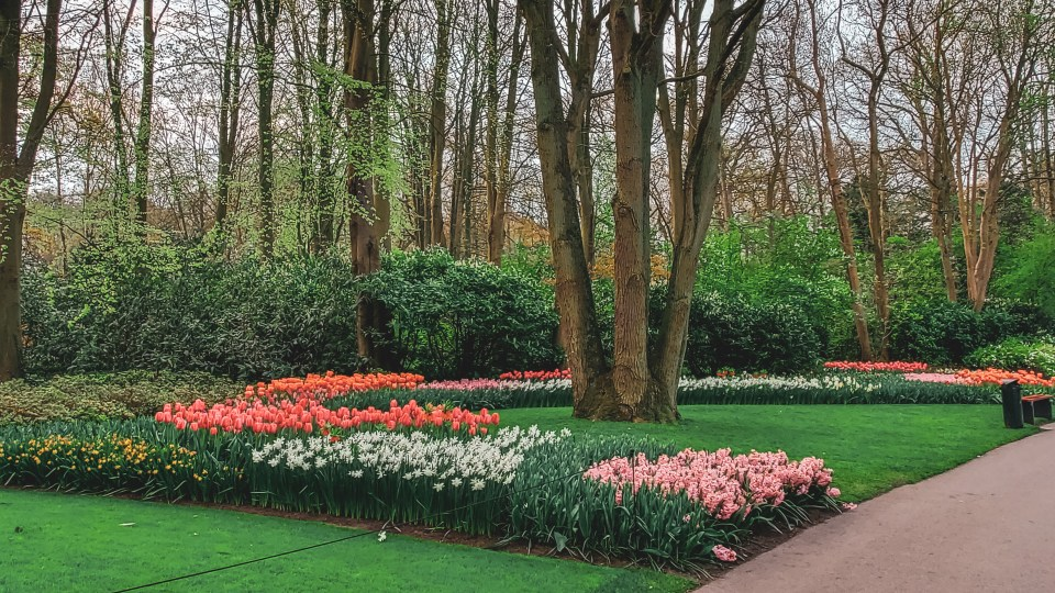Gardens at Keukenhof in The Netherlands
