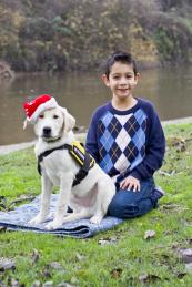 Training for Service dog