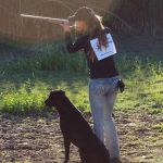 AKC Hunt Tests program have 3 different levels