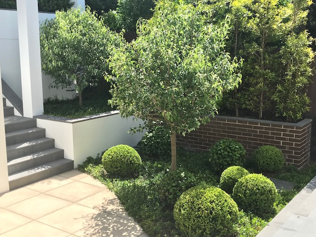 CONTEMPORARY ENTRANCE COURTYARD – BELLEVUE HILL