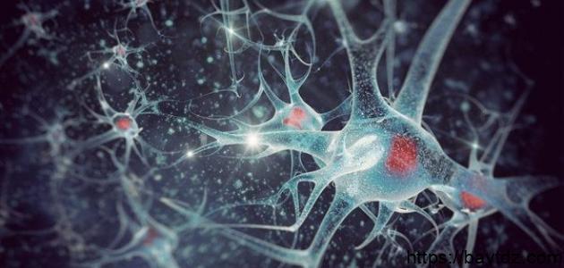 أعراض الاستسقاء الدماغي – فيديو
