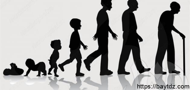 المراحل العمرية للإنسان