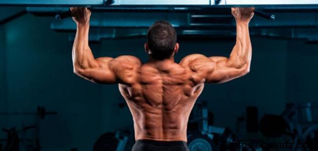 كيفية تقوية عضلات الجسم