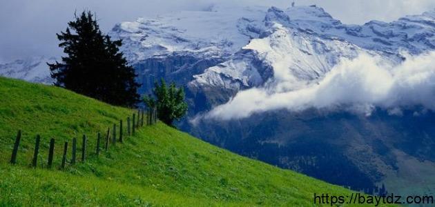 معلومات عن مدينة سويسرا