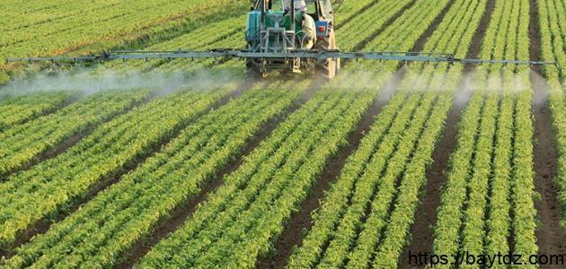 مفهوم الزراعة التقليدية