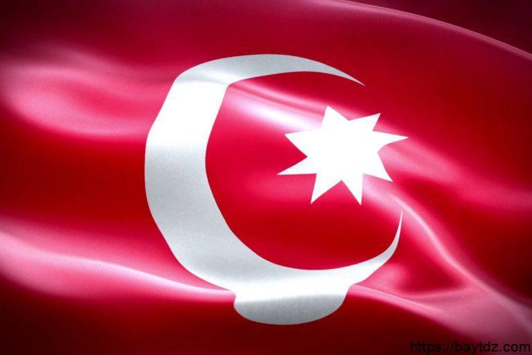 اللغات المستخدمة في تركيا