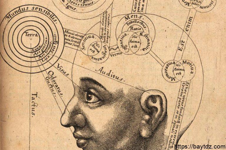 """تعريف الفيمينولوجيا """" علم الظواهر """""""