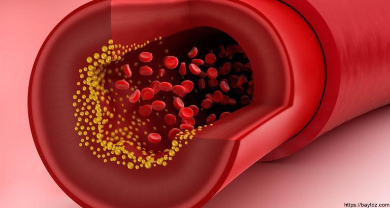 جدول نسب الكوليسترول في الدم