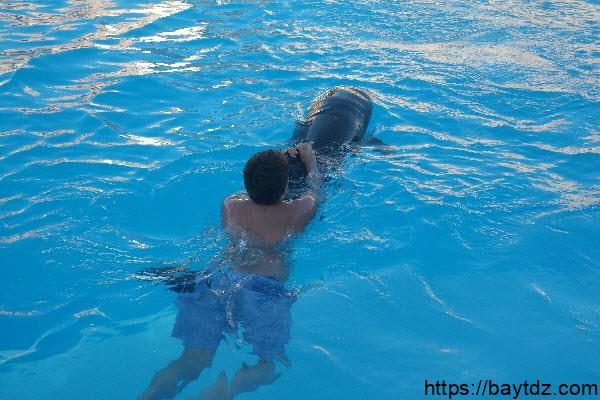 خطوات تعليم سباحة الدولفين