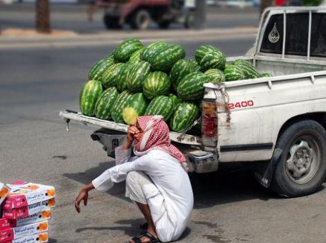 قصة شباب سعوديين ينهون الدراسة ويبيعون البطيح على جنبات الطرق