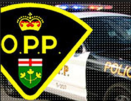 OPP say man missing as snowmobiles go into Sturgeon Lake