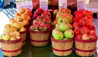 East York Farmers Market