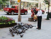 Bird man at work
