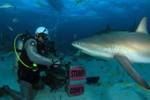 DIVING_0115_INTERVIEW-0001