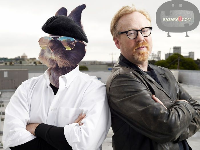 mythbusters-funnybunny